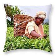 Tea Picker In Kenya Throw Pillow