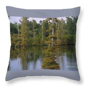Tennesse Cypress In Wetland  Throw Pillow