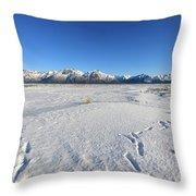 Turnagain Arm And Chugach Range From Hope Alaska Throw Pillow