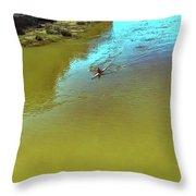 Up Stream Throw Pillow