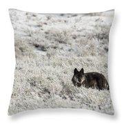 W18 Throw Pillow by Joshua Able's Wildlife