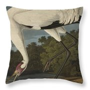 Whooping Crane  From The Birds Of America  Throw Pillow