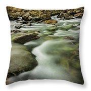 Winter River Rapids Throw Pillow