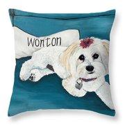Wonton Throw Pillow