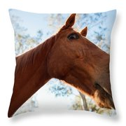 Horse In A Countryside Throw Pillow