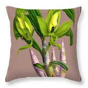 Orchid Vintage Print On Colored Paperboard Throw Pillow
