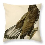 White Headed Eagle  Throw Pillow
