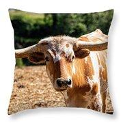 Longhorn Bull In The Paddock Throw Pillow