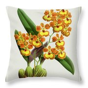 Orchid Vintage Print On Tinted Paperboard Throw Pillow