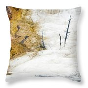 1474 Scorched Earth Throw Pillow