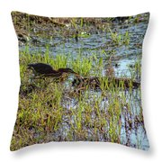 Green Heron Looking For Food Throw Pillow