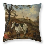 A White Horse Standing By A Sleeping Man  Throw Pillow