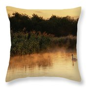 Beautiful Dawn Landscape Image Of River Thames At Lechlade-on-th Throw Pillow