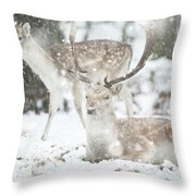 Beautiful Image Of Fallow Deer In Snow Winter Landscape In Heavy Throw Pillow