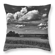 Beautiful Iowa Farm Scene Throw Pillow