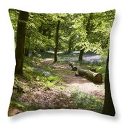Blackbury Camp Throw Pillow
