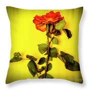 Dying Flower Against A Yellow Background Throw Pillow