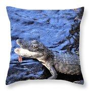 Little Gator Throw Pillow