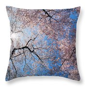 Low Angle View Of Cherry Blossom Trees Throw Pillow