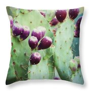 Prickly Pear Fruit Throw Pillow