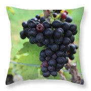 Purple Grape Bunches 17 Throw Pillow
