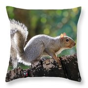 Squirrel Friend Throw Pillow