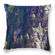 2014 Valentine Mountain Trip Throw Pillow