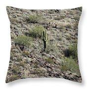 2016 Husband And Wife Saguaro Throw Pillow