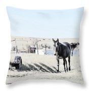 3 Mules Throw Pillow