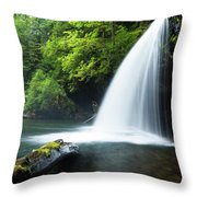 Waterfall In A Forest, Samuel H Throw Pillow