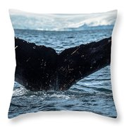 Whale In The Ocean, Southern Ocean Throw Pillow