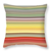 Number Forty Three, 2017 Throw Pillow