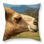 Camel Out Amongst Nature Throw Pillow