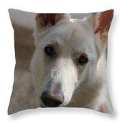 Dog Portrait Throw Pillow