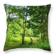 Green's Hill Throw Pillow