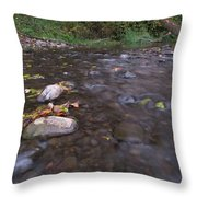 Long Exposure Photographs Of Rolling River With Fall Foliage Throw Pillow