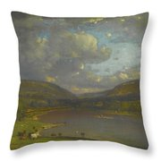 On The Delaware River Throw Pillow