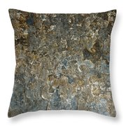 Weathered Stone Wall Throw Pillow