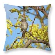 Willow Flycatcher Throw Pillow