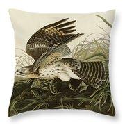 Winter Hawk  Throw Pillow