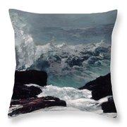 Maine Coast  Throw Pillow