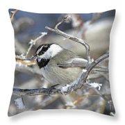 Mountain Chickadee Throw Pillow