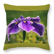 Iris Allure Throw Pillow