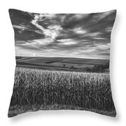 America's Bread Basket Throw Pillow