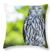 Barking Owl Throw Pillow by Rob D Imagery