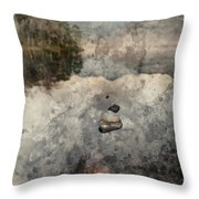 Digital Watercolor Painting Of Beautiful Autumn Fall Colorful Su Throw Pillow