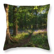 Stunning Bluebell Forest Landscape Image In Soft Sunlight In Spr Throw Pillow