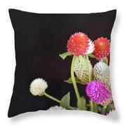 7191-multicolor Throw Pillow