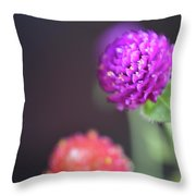 7194-purple Wit Red Throw Pillow