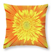 7289-yelow Gerber Throw Pillow